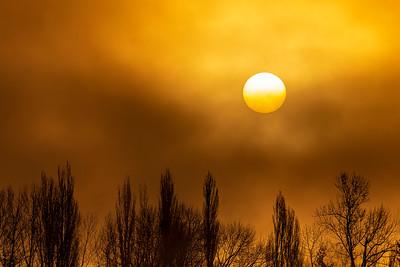 Morning Fog on Lake Whatcom   c -  0014
