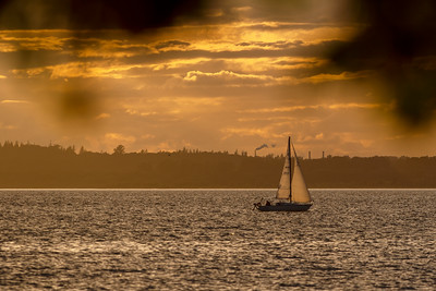 Bellingham Bay Sunset Sailing