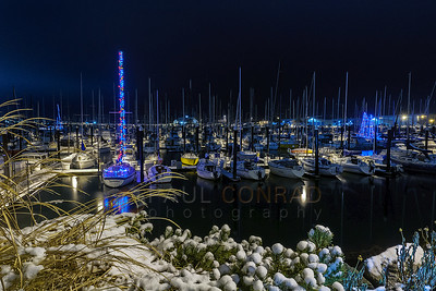 Christmas at Squalicum Harbor in Bellingham, WA