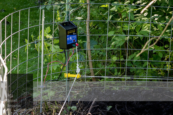 Electric fence charger secures the fence