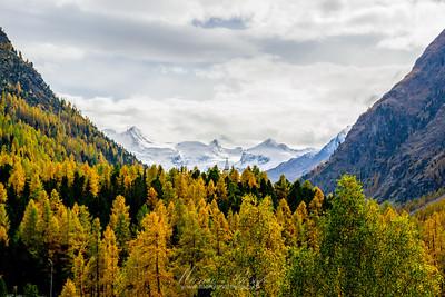 Hiking Trail: Muottas Muragl - Segantini-Hütte - Alp Languard - Pontresin