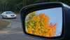 Fall in the mirror, Shoreview, Mn., #0183