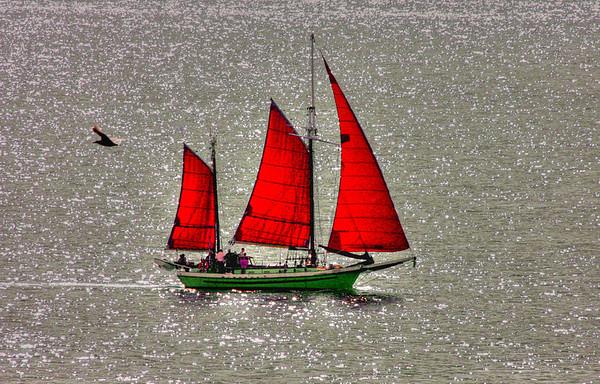 Sailing voyage off Vancouver, #0118