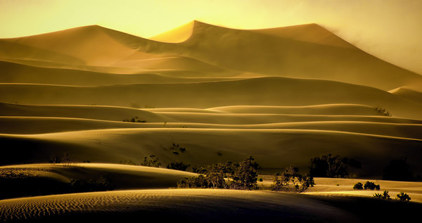 Sand storm dunes of Stovepipe Wells, Death Valley, California, #0085