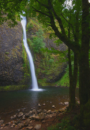 The lower portion of the Horsetail Falls on the Columbia River Gorge, Oregon, #0116