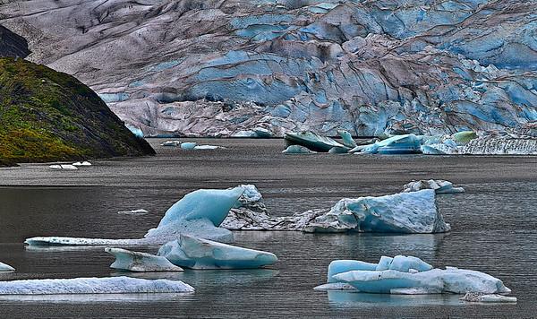 Mendenhall Glacier, Alaska, #0149