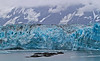 The face of Hubbard Glacier, Alaska, eight miles wide, #0146
