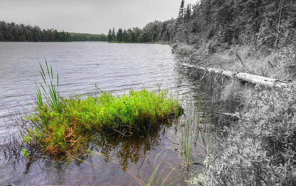 Lake Agnes, on the Superior Hiking Trail, near Lutsen, Minnesota, #0065