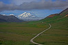 Trail toward Mt. McKinley on a clear day in August, #0430