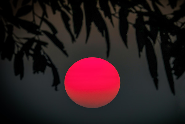Setting Sun with haze, Shoreview, Mn., #1798
