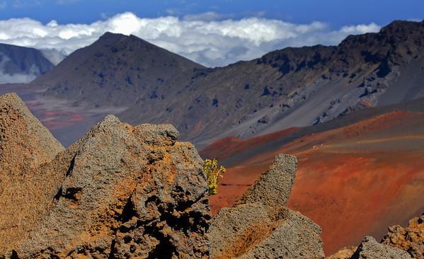 Haleakala Crater on Maui, #0104