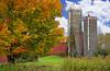Fall Farm #1814