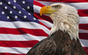 Bald Eagle and flag in Red Wing, Minnesota, #0631