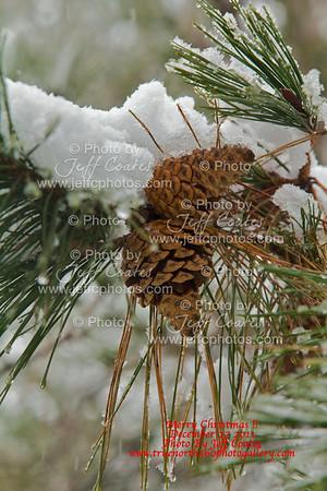 2011-12-27-Snow-JeffHouse-57 - Version 2