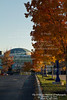 2013-11-10-Trees-TCM-02 - Version 2