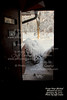 2014-01-06-Snow-JeffFrntDoor-01 - Version 3