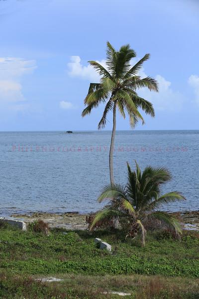 Florida Keys.