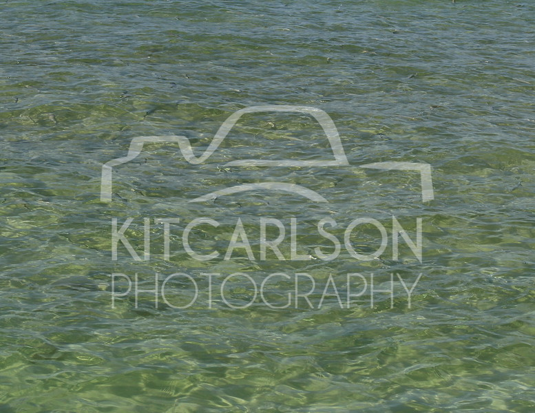 2015-05-09-KitCarlsonPhoto-020069 E