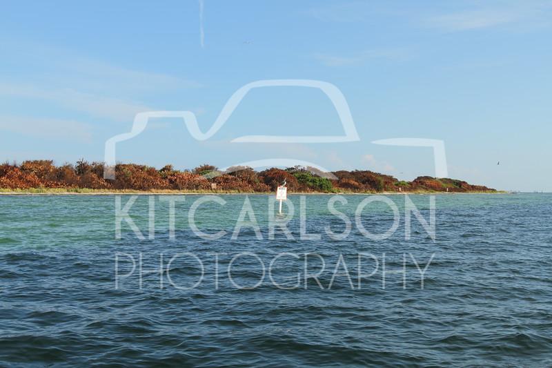 2016-07-31-KitCarlsonPhoto-041499E