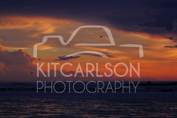 2018-07-03-KitCarlsonPhoto-062082E