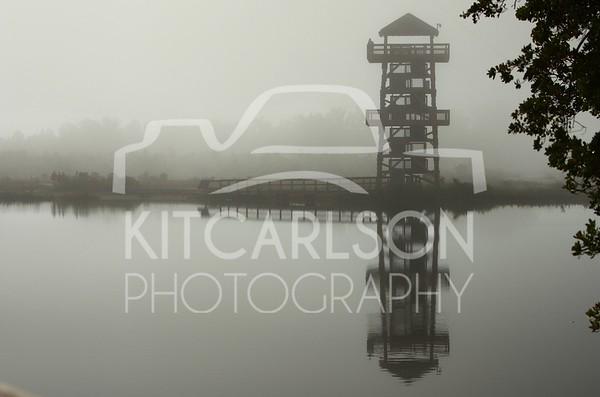 2012_12_09_K Carlson_46768