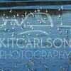 2013_01_27_KitCarlsonPhoto_054650