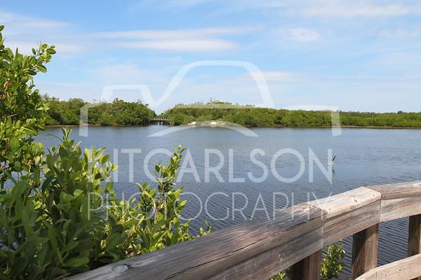 2015-09-21-KitCarlsonPhoto-025331 E