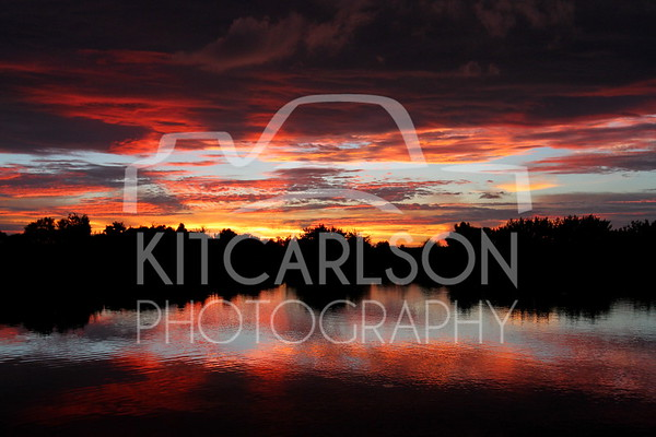 2014-09-08-KitCarlsonPhoto-009209 E