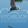 2012_11_24_K Carlson_46596