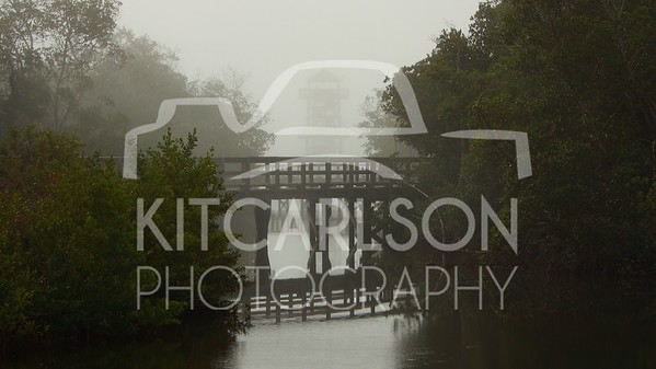 2012_12_09_K Carlson_46786
