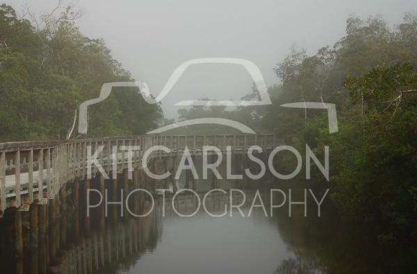 2012_12_09_K Carlson_46755