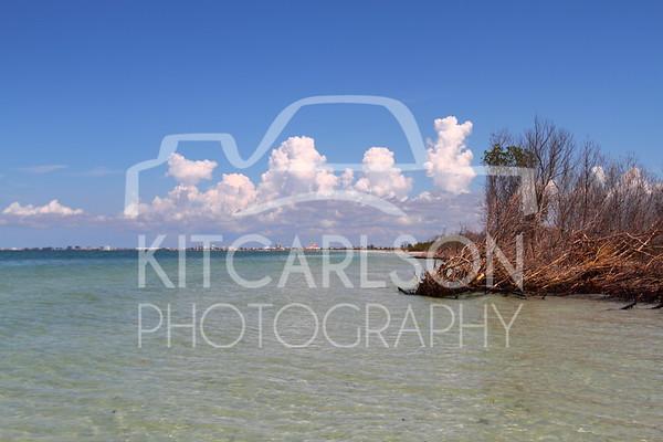 2016-09-26-KitCarlsonPhoto-042681E