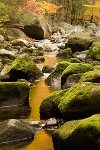 Brook in Harriman State Park