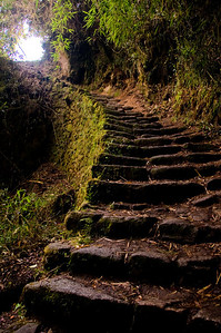 Stairway along the Inca Trail