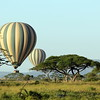 Hot air balloon safari, Masai Mara National Reserve, Kenya