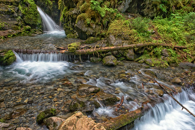 Virgin Creek Falls