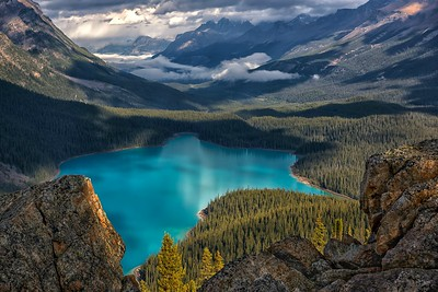 Precious Peyto Lake