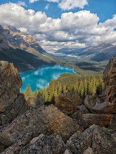 Looking at Peyto Lake