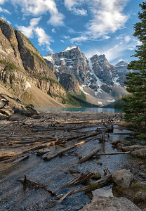 Logs at Lake Moraine