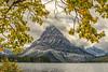 Fall Foliage Framing Mt. Sinopah