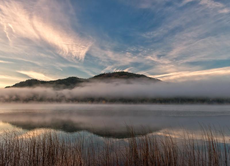 A Misty Morn