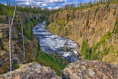 Yellowstone's Lewis River Canyon