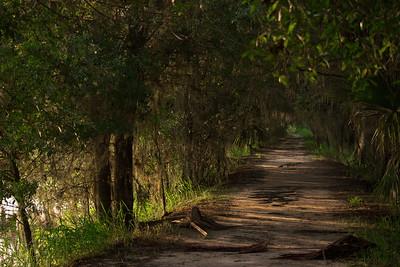 Trails 15