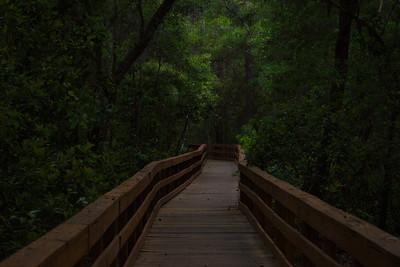 Trails 14