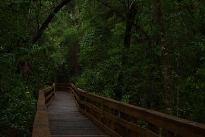 Trails 16