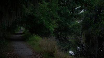 Trails 07