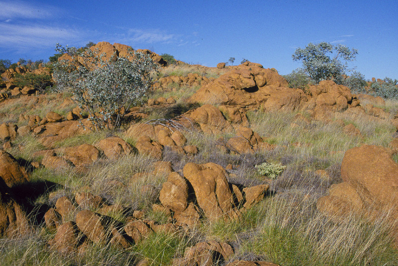 Sybella Creek, Mt Isa, QLD. Habitat of the Kalkadoon Grasswren