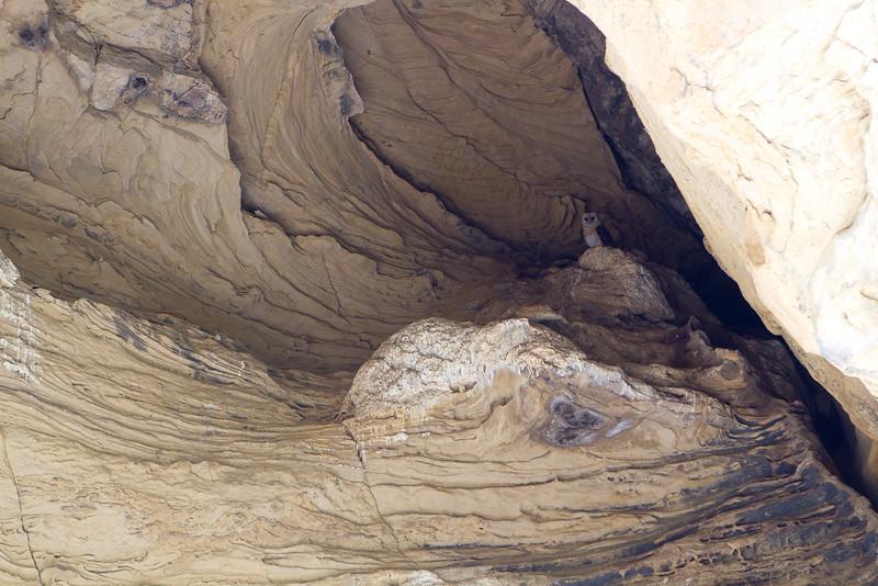 tmo_caves-5970