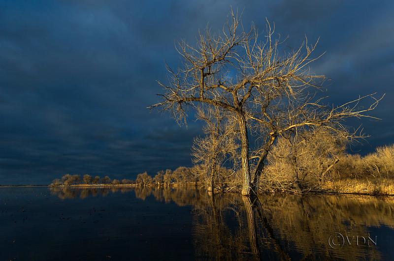 Barr Lake