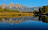 Lazy Morning .....<br /> Grand Teton National Park, Wyoming